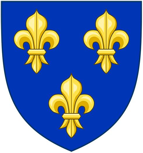 Französische Fahne Kaufen