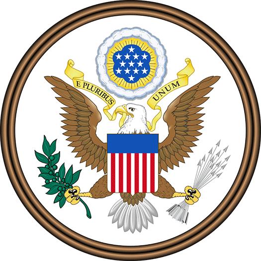 Amerikanische Fahne Kaufen