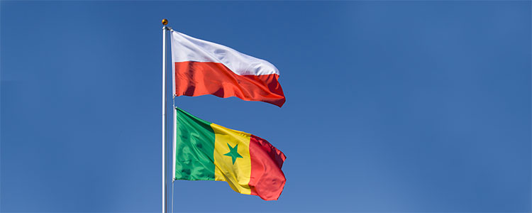 Group H: Poland and Senegal - World Cup 2018 Flags