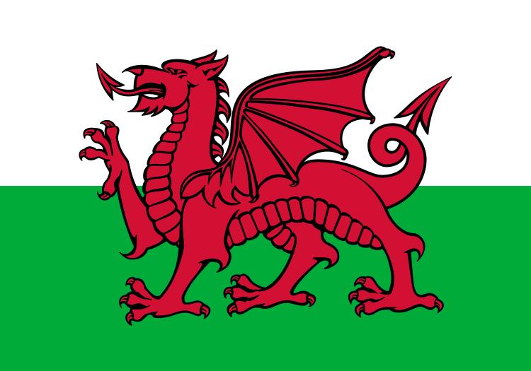 Drapeau pays de galles acheter drapeau gallois pas cher - Logo pays de galles ...