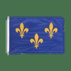 Île-de-France - Grommet Flag PRO 2x3 ft