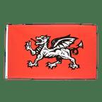 Drapeau Angleterre avec Dragon - 90 x 150 cm