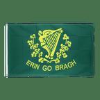 Erin Go Bragh - 3x5 ft Flag