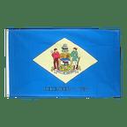 Delaware - 3x5 ft Flag