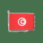 """Tunisia - Boat Flag 12x16"""""""