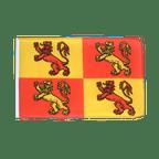 Petit drapeau Owain Glyndwr Pays de Galles Royal - 30 x 45 cm