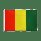Guinea - Sleeved Flag ECO 2x3 ft