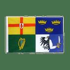 Ireland 4 provinces - Sleeved Flag ECO 2x3 ft