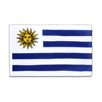 Uruguay - Sleeved Flag ECO 2x3 ft