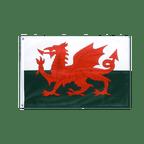 Wales - Grommet Flag PRO 2x3 ft