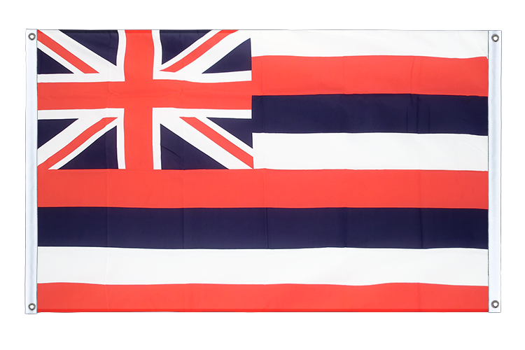 Banner Flag Hawaii - 3x5 ft (90x150 cm), landscape