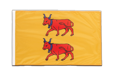 Sleeved Flag PRO Béarn - 2x3 ft