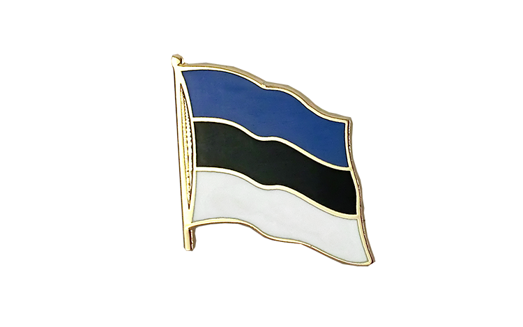 Pin's drapeau Estonie | estonien 2x2 cm
