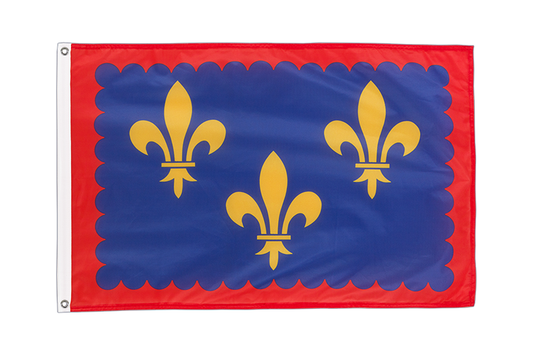 Grommet Flag PRO Berry - 2x3 ft