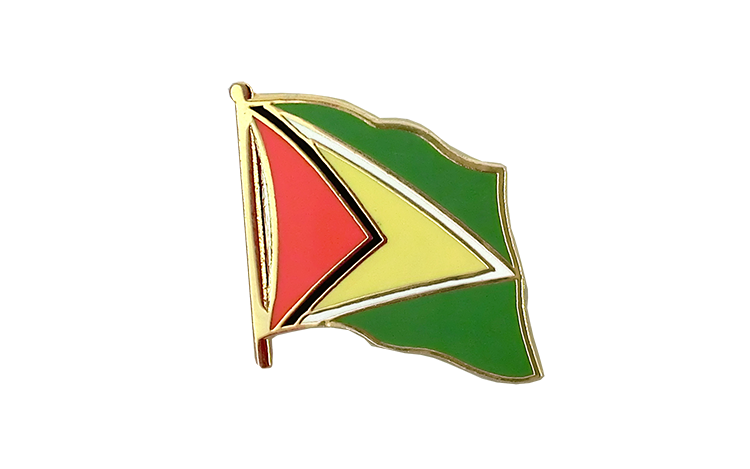 Flag Lapel Pin Guyana