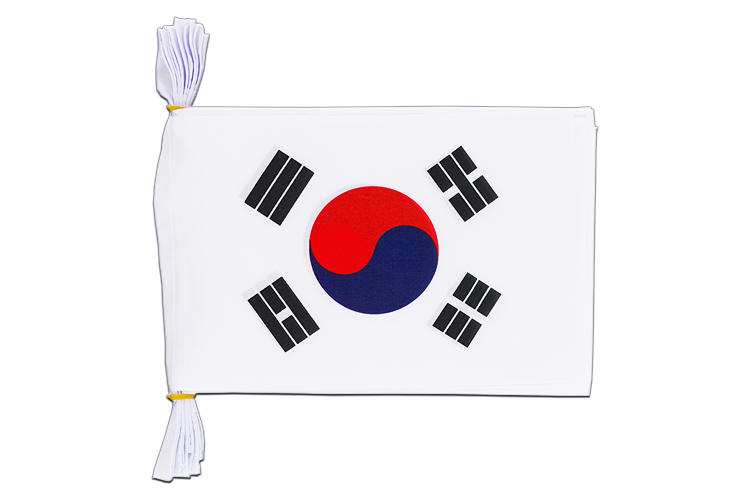 "South Korea Flag Bunting 6x9"", 3 m"