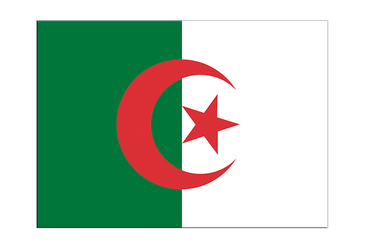 "Algeria - Flag Sticker 3x4"", 5 pcs"