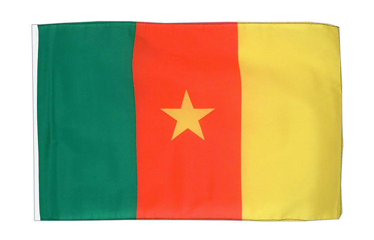 Cameroon - 12x18 in Flag