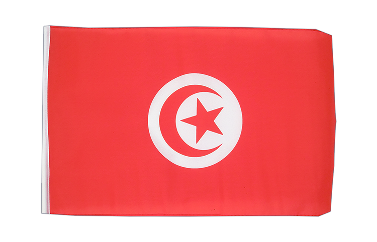 Small Tunisia Flag 12x18""