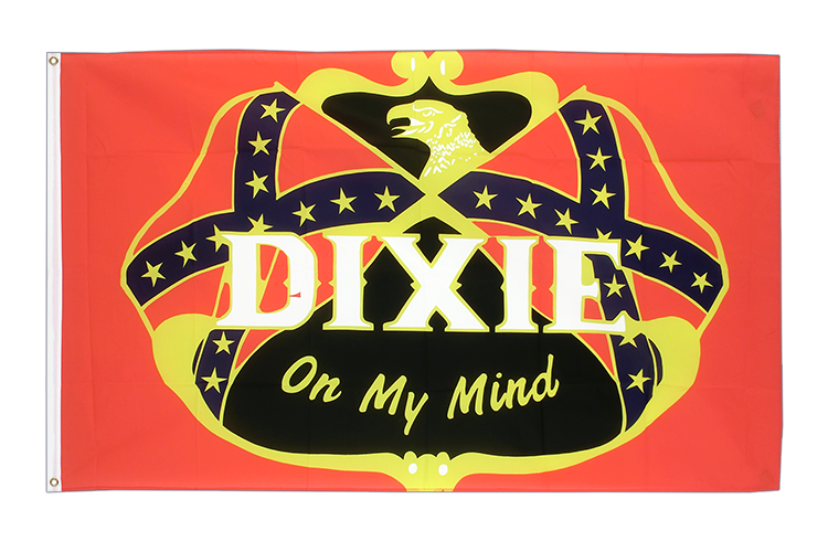 USA Südstaaten Dixie on my mind - Flagge 90 x 150 cm kaufen