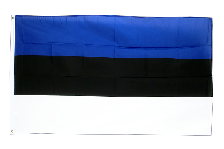 Cheap Estonia Flag - 2x3 ft