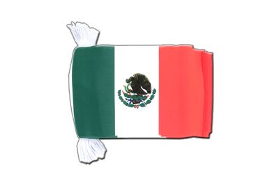 Flag Bunting Mexico - 6x9""