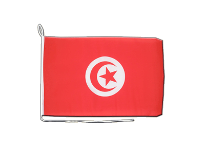 Boat Flag Tunisia - 12x16""