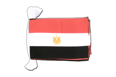 "Egypt Flag Bunting 6x9"", 9 m"