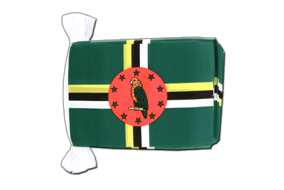 Flag Bunting Dominica - 6x9""