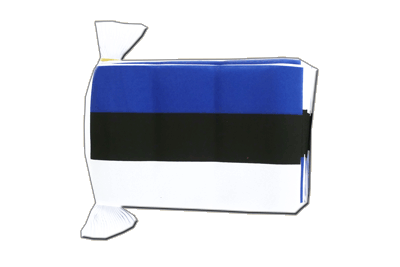 Flag Bunting Estonia - 6x9""