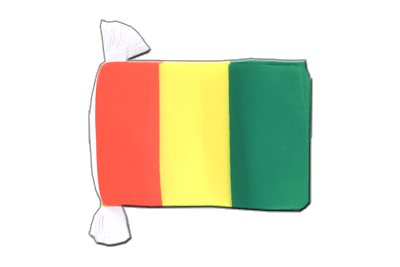 Flag Bunting Guinea - 6x9""