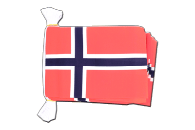 Flag Bunting Norway - 6x9""