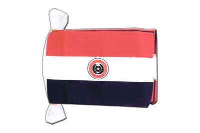 Flag Bunting Paraguay - 6x9""