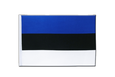 Satin Estonia Flag - 6x9""