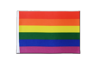 Satin Flag Rainbow - 6x9""