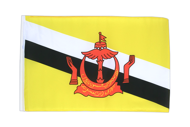 Brunei - 12x18 in Flag