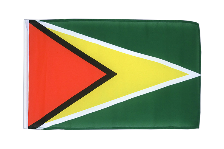 Guyana - 12x18 in Flag