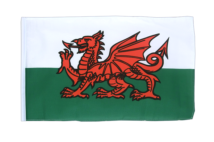 Small Wales Flag 12x18""