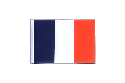 Fanion drapeau France 10x15 cm
