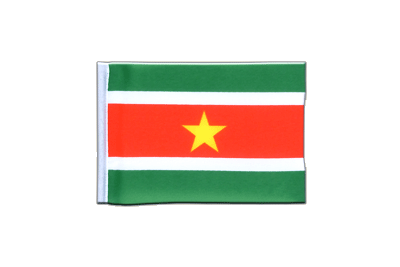 Mini Suriname Flag - 4x6""