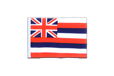 Mini Hawaii Flag 4x6""