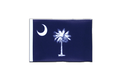 Mini Flag South Carolina - 4x6""