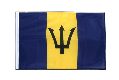 Sleeved Flag PRO Barbados - 2x3 ft