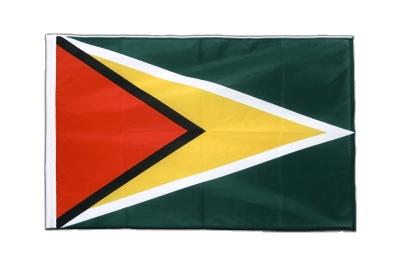 Sleeved Flag PRO Guyana - 2x3 ft