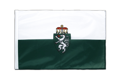 Sleeved Flag PRO Styria - 2x3 ft