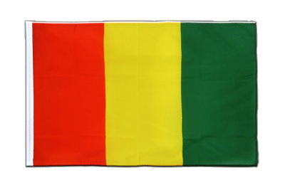 Sleeved Flag ECO Guinea - 2x3 ft