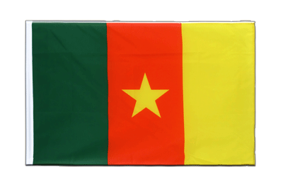 Sleeved Flag ECO Cameroon - 2x3 ft