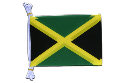 "Jamaica Mini Bunting Flags - 6x9"", 3 m"