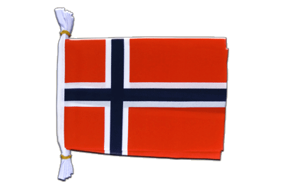 "Norway Mini Bunting Flags - 6x9"", 3 m"