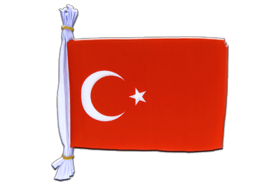 "Turkey Mini Bunting Flags - 6x9"", 3 m"